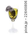 Cute chinchilla baby in glass 22640806