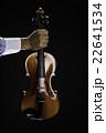 violin 22641534
