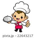 シェフ 料理人 料理師のイラスト 22643217