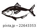 金目鯛 水墨画 魚のイラスト 22643353