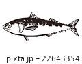 鯖 水墨画 魚のイラスト 22643354