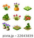 いちご イチゴ 花のイラスト 22643839