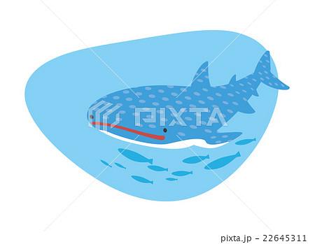 ジンベエザメのイラスト素材 22645311 Pixta