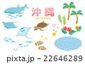 沖縄セット 22646289