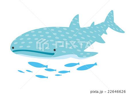 ジンベエザメのイラスト素材 22646626 Pixta