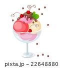 アイス フルーツ 実のイラスト 22648880