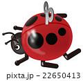 てんとう虫 22650413