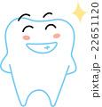 歯くん-きらりーん 22651120
