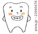 歯くん 22660476