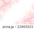花 バラ 背景のイラスト 22663023