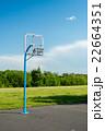 バスケットゴール 22664351