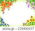 夏の花々のフレーム 22666437