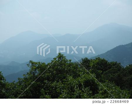 6月の陣馬山頂上からの眺望 22668469