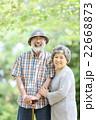 新緑 シニア オシドリ夫婦  22668873