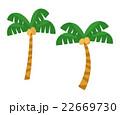 ヤシの木【沖縄、南国・シリーズ】 22669730