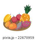 トロピカルフルーツ ドラゴンフルーツ パイナップルのイラスト 22670959