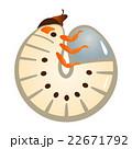 カブトムシの幼虫 22671792