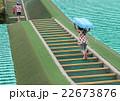 芝滑りの階段を登る子供 22673876