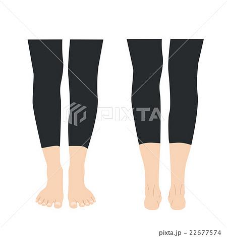 女性 足 もも ふくらはぎのイラスト素材 22677574 Pixta