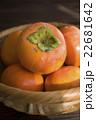 柿の収穫 22681642