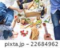 ピクニック 22684962