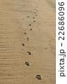 砂浜足跡 22686096