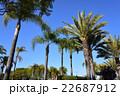 ロサンゼルス 22687912