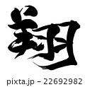 筆文字 翔.n 22692982