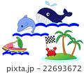 海の動物の競泳 22693672