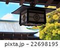 明治神宮 -東京の貴重な緑の杜- 釣灯籠 22698195