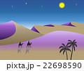 月の砂漠 22698590