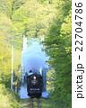 新緑の磐越西線SL 22704786