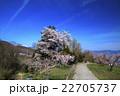 桃源郷の春 22705737