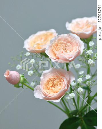 ピンクのバラとかすみ草の花束 22708744