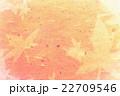 モミジ紋様入り和紙 22709546
