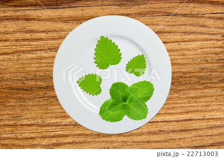 plate with mint herb on wooden tableの写真素材 [22713003] - PIXTA