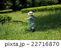 夏休み昆虫採集 22716870
