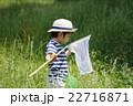 夏休み昆虫採集 22716871
