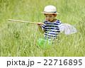 夏休み昆虫採集 22716895