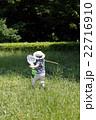 夏休み昆虫採集 22716910