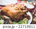 まるごと 丸鶏 22719811