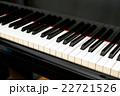 グランドピアノの鍵盤 22721526