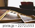グランドピアノ 22721553