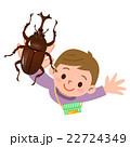 昆虫採集 カブトムシ 22724349