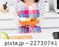 主婦(お弁当)  22730741