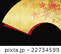 模様 背景素材 和柄のイラスト 22734599