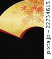 模様 背景素材 和柄のイラスト 22734615