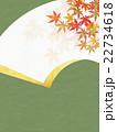背景素材 和柄 模様のイラスト 22734618