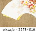 背景素材 和柄 模様のイラスト 22734619