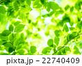 新緑エコイメージ 22740409